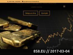Miniaturka zloto24.eu (Złoto inwestycyjne, sztabki i monety)