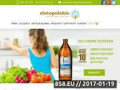 Miniaturka domeny zlotopolskie.pl