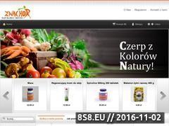 Miniaturka domeny www.znachor.biz