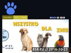Miniaturka domeny www.zoologicznybialystok.pl