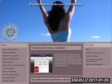 Zrzut strony Informacje o grze przeglądarkowej Zoomumba.