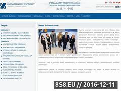 Miniaturka www.zpartners.eu (Zacharzewski i Wspólnicy)