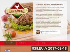 Miniaturka domeny zpmszarek.pl