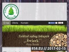 Miniaturka domeny www.zulswierk.pl