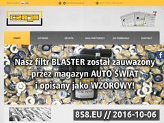 Miniaturka domeny www.zwmczaja.pl