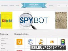 Miniaturka domeny www.zwodnik.pl