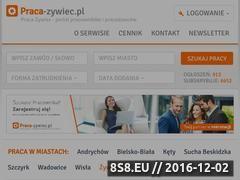 Miniaturka domeny www.zywiec-praca.pl
